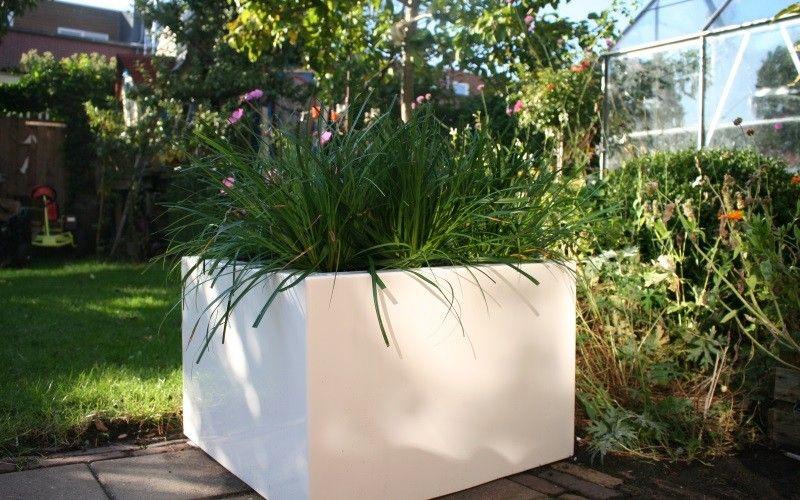Hoe beplant je een polyester plantenbak? Bekijk de video!